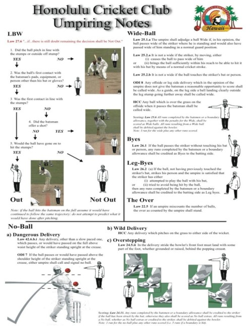 Cricket umpire rules and decisions